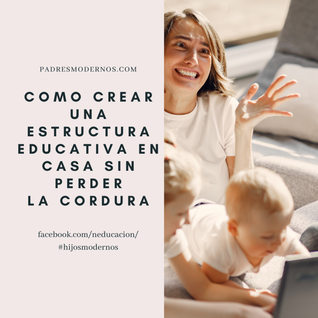 estructura educativa
